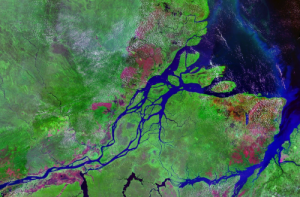 Amazon River: Credit NASA